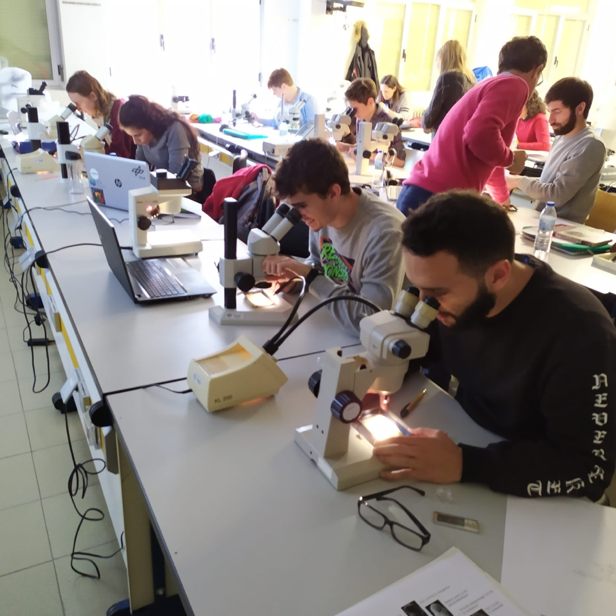 SaltGiant Short Course in Salamanca (November, 25th to 29th 2019)